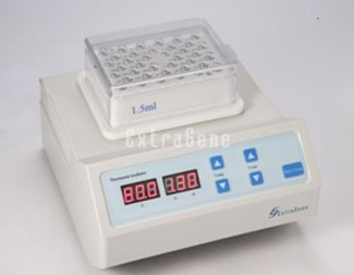 ThermoStat Incubater